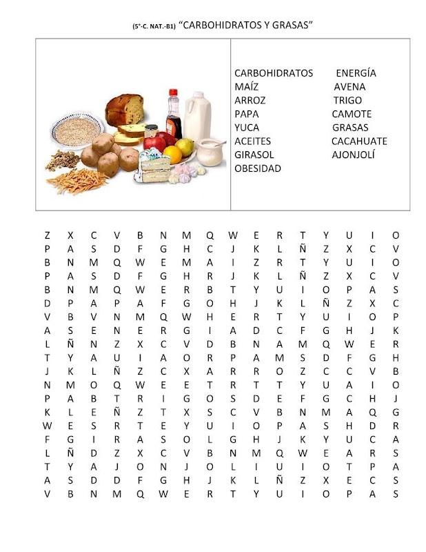 Sopa de letras carbohidratos y grasas