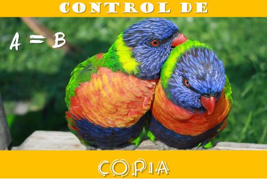 Control de copia