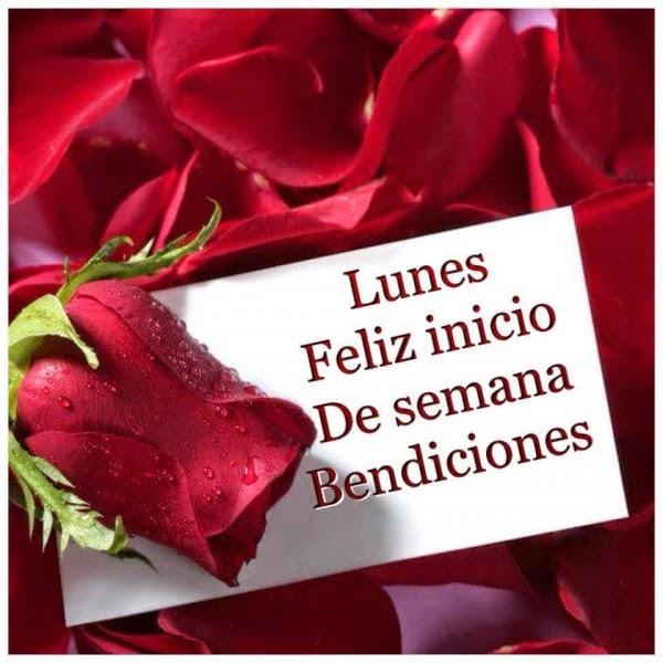 imagen de rosas con feliz lunes