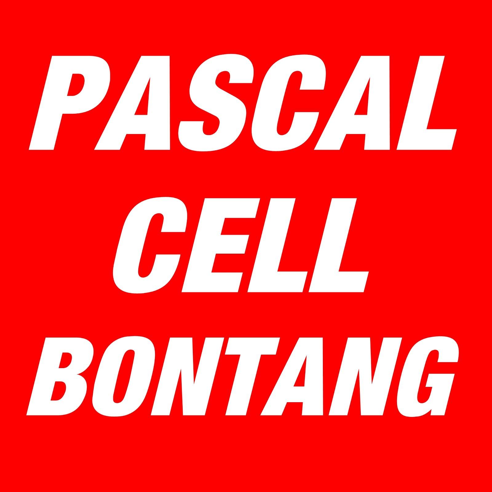 Pascal Cell Bontang