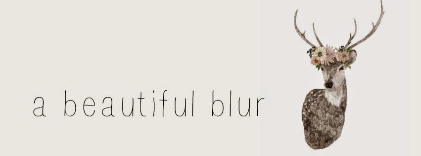 A Beautiful Blur