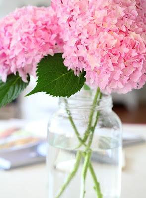 ανθέμιο λουλουδια