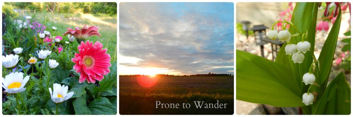 Prone to Wander