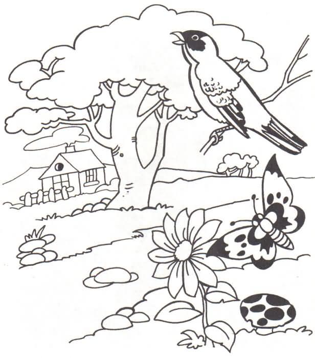 desenhos para colorir de paisagens