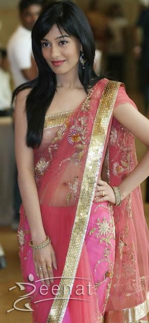 Amrita Rao In Hot Saree Fashion 2013 Carolina Arango