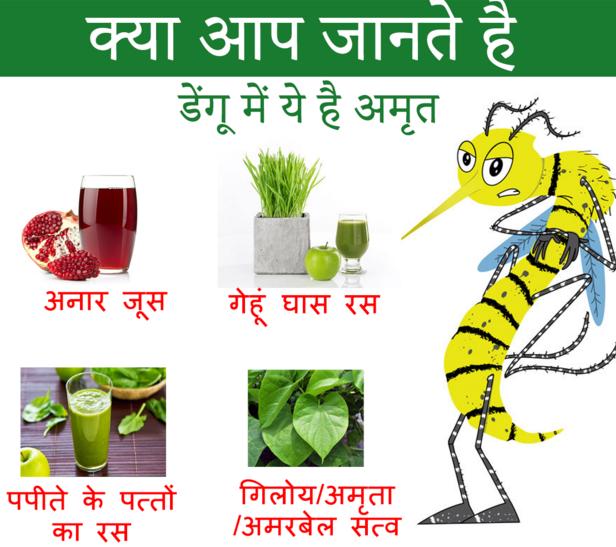 Baanjhpan Dengue Flu Har Rog ki Ek Davaa Giloy