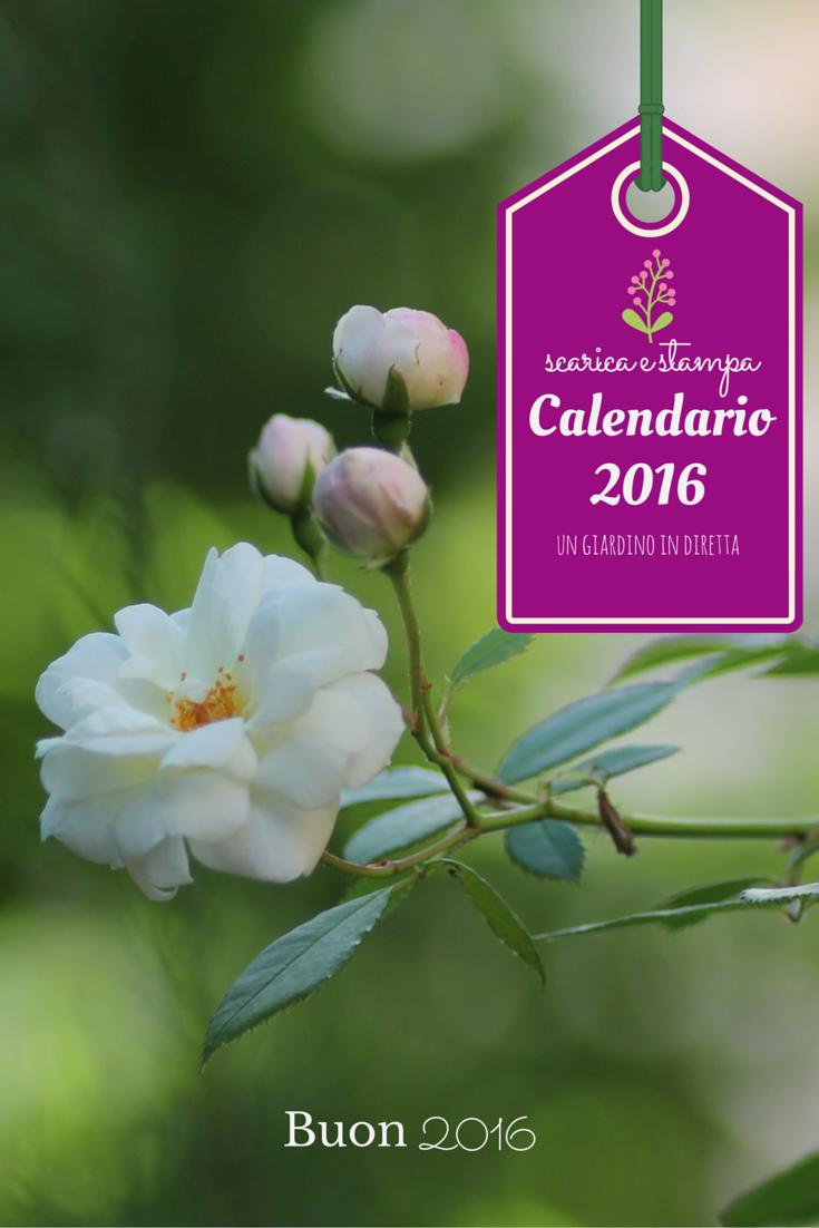 scarica e stampa il calendario 2016!