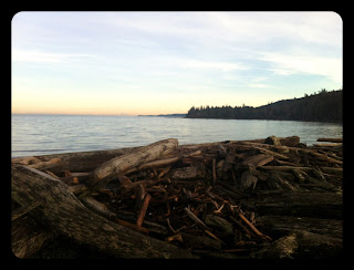 Gabriola, Beach, Walks on Gabriola, Lynch's