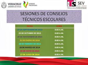 SESIONES DE CONSEJO TECNICO ESCOLAR 2013-2014