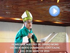 VIDEO DE LA HOMILÍA DEL SR. OBISPO, DEL DÍA 15 DE MAYO DE 2016