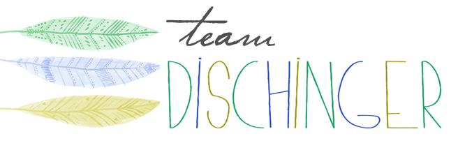 team dischinger