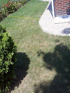Lawn Secition 1a starting to yellow after spraying with BurnOut II