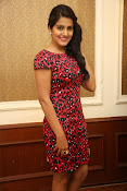 Vishaka singh at rowdy fellow event-thumbnail-10