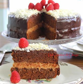 torta al cioccolato speziato con crema di lamponi
