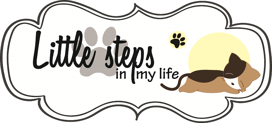 LiTtle sTepS iN mY LiFe