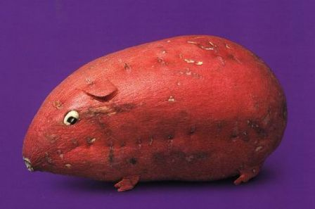 Animal fruit and vegetable sculpture
