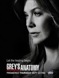 Assistir Grey's Anatomy 10 Temporada Online – Legendado