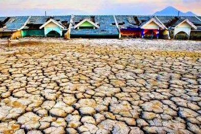 Upaya Mengatasi Pencemaran Tanah Secara Efektif