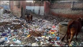 आगरा में  स्वच्छ भारत अभियान खोकला