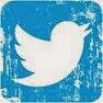 Follow Bunny on Twitter