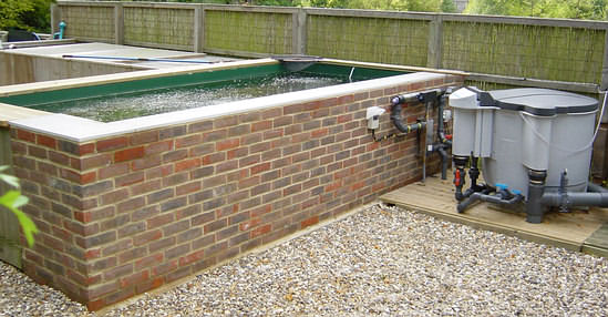 Agro business idea for Koi pond construction guide