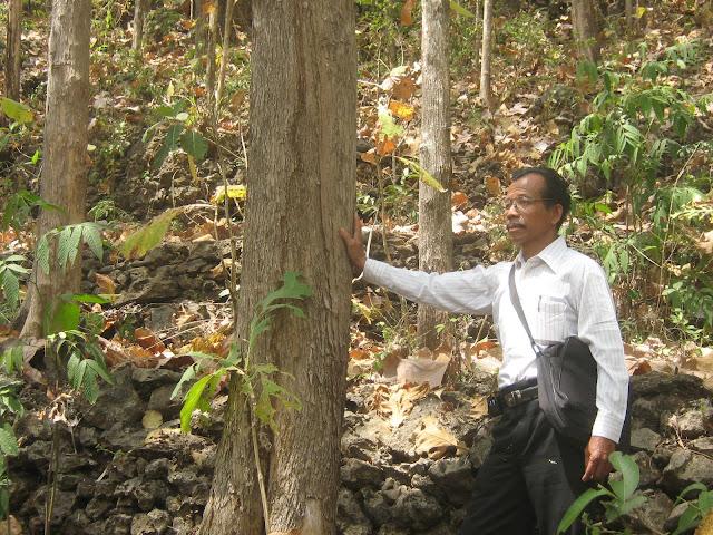 Menanam tanaman di tanah berbatu