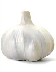σκόρδοστούπι