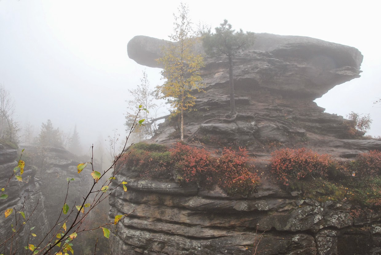 Черепаха в тумане - Чертово городище осенью