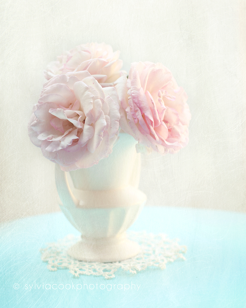roses, shabby chic decor, pink roses
