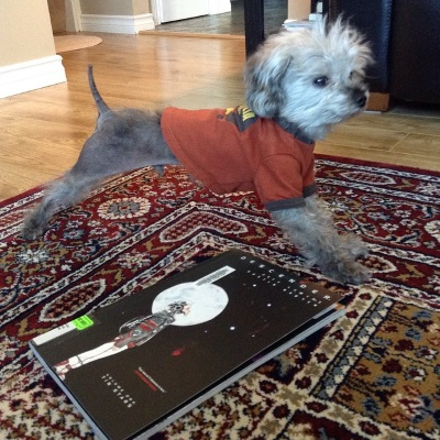 A fuzzy grey poodle, Murchie, takes a big stretch in front of a trade paperback copy of Descender Volume One. Murchie wears an orange t-shirt with brown trim. The book's cover features a child-size, pale-complected android raising his face to the moon against a solid black background.