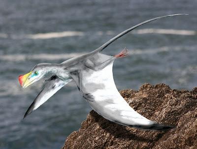Austriadactylus