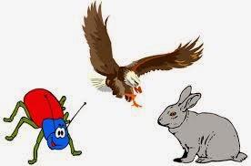 El águila, la liebre y el escarabajo.