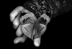 O segredo é não correr atrás das borboletas,é cuidar do jardim para  que elas venham até você !
