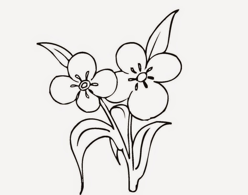 Beautiful Flowers For Kid Coloring Page Free Wallpaper