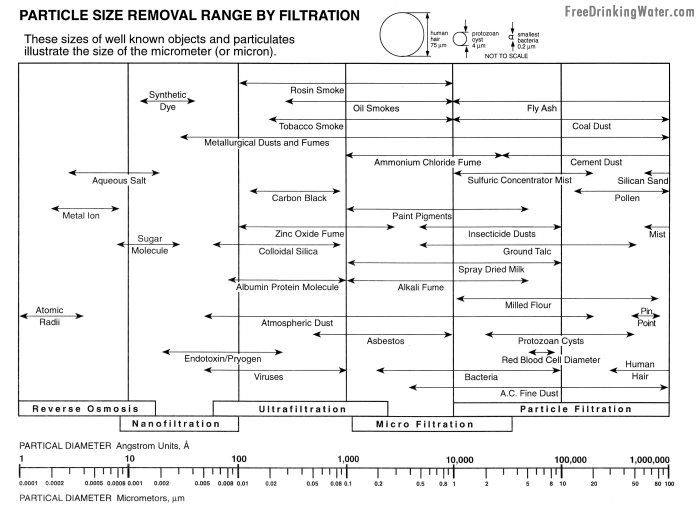 Simple Healthy Living Information Fluoride