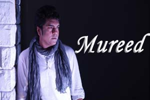 Mureed