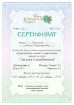 Мой сертификат об успешном окончании школы студии скрапбукинга.