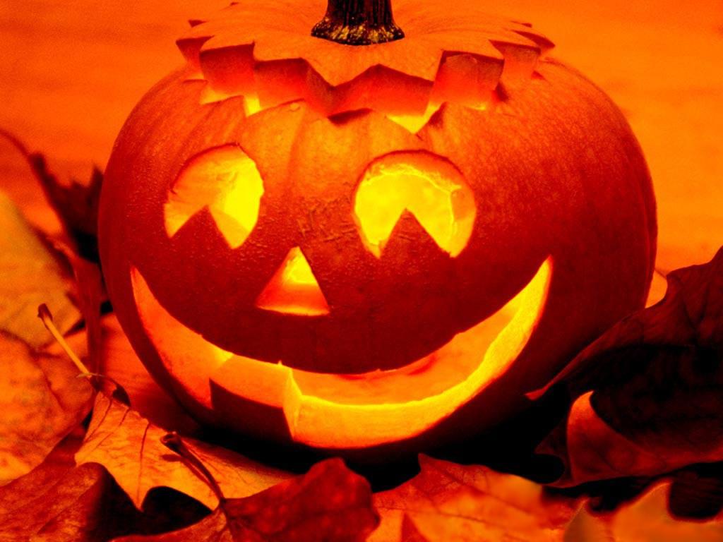 http://2.bp.blogspot.com/-qh9BZJZzoGM/UFEGS9w4WzI/AAAAAAAACH8/h5AVj2Hi_GA/s1600/Funny-Smiling-Pumpkins-Wallpaper.jpg