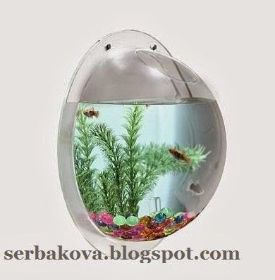 Приспособление для аквариума