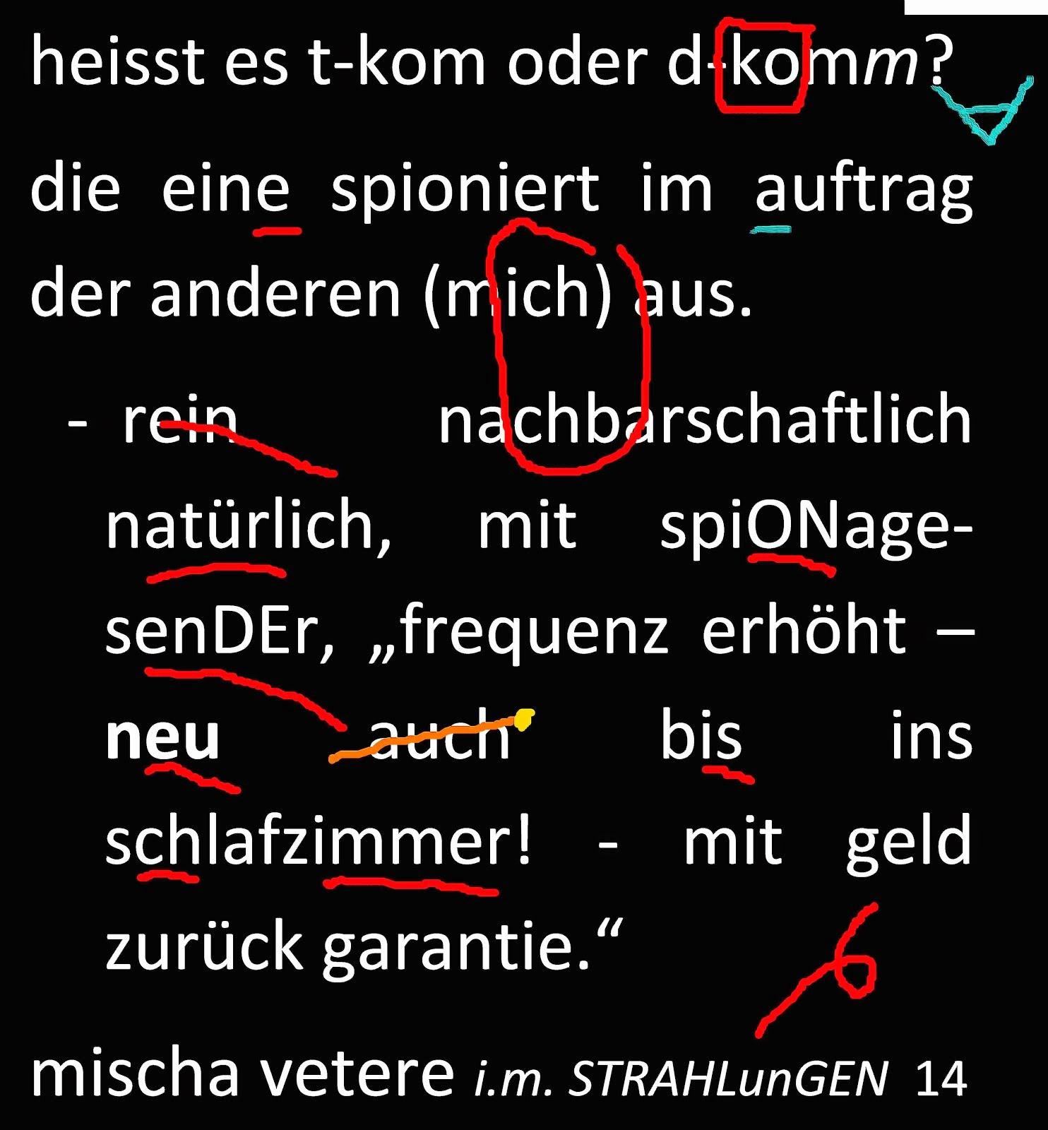 rassenschande homophobie deutschland schweiz sippenhaftung volksverhetzung nsa it gg mv