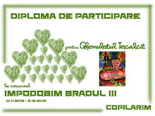 Impodobim bradul III