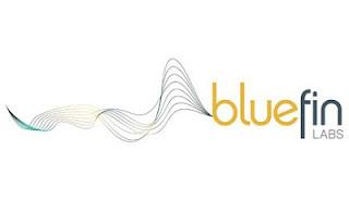 membeli blusfin labs
