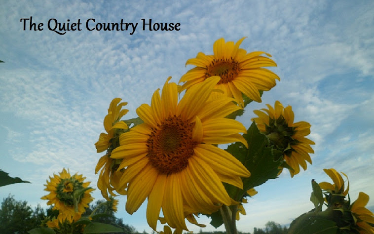 The Quiet Country House