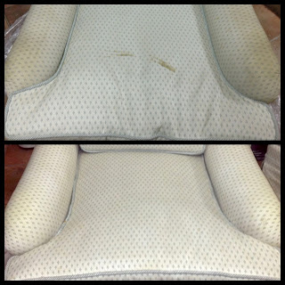 Organic Sofa Cleaning NYC, Green Sofa Cleaning NYC, New York Sofa Cleaners, Best Sofa Cleaning, How to remove stains from sofa, Professional Sofa Cleaning NY, PureGreen carpet cleaning