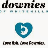 http://www.downiefish.co.uk/index.html