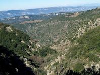 El Sot del Molí amb la masia de la Figuera i al fons la Serra de l'Arca, vistos des de la zona del Gorg del Sot del Marxant