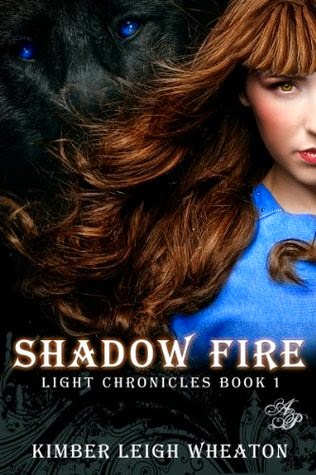 Shadow Fire cover