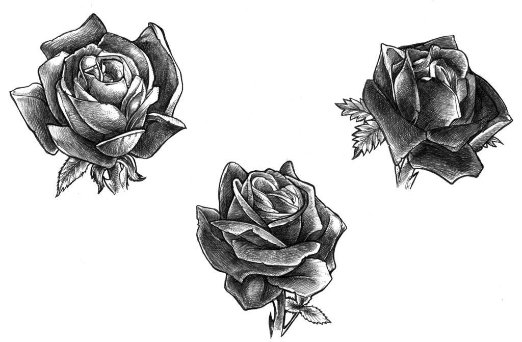 black rose tattoo designs ideas photos images memoir tattoos. Black Bedroom Furniture Sets. Home Design Ideas