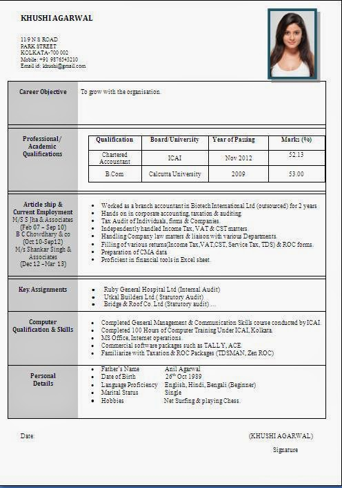 Size Cv Format File Resume Templates Pdf Form Work