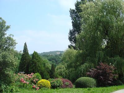 Arte y jardiner a setos campestres hermosos y tiles - Utiles de jardineria ...